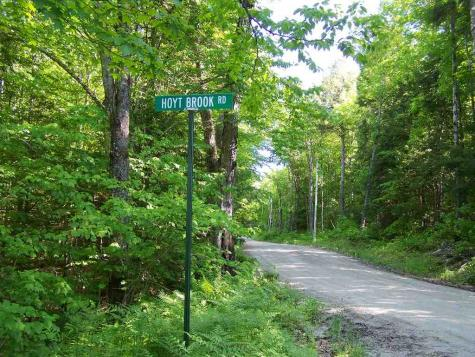 Lot 48 Dean and Hoyt Brook Road Danbury NH 03230