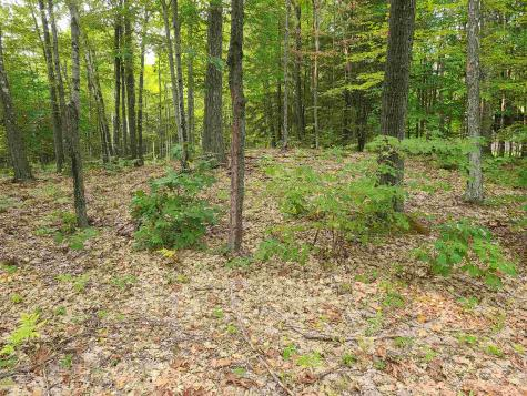 Pond Brook Road Chesterfield NH 03466