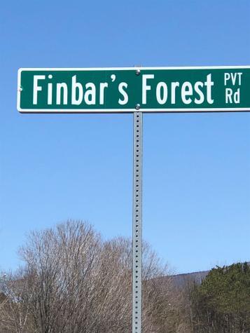530 Finbars Forest Road Manchester VT 05255