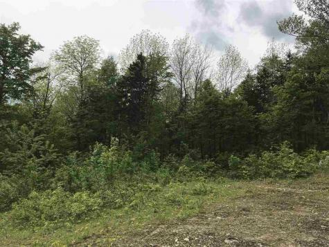 209 Spruce Andover VT 05143