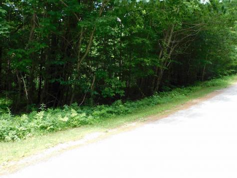 White Ash Road Holderness NH 03245