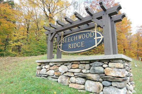 1-3,6-9 Beechwood Ridge Road Winhall VT 05340