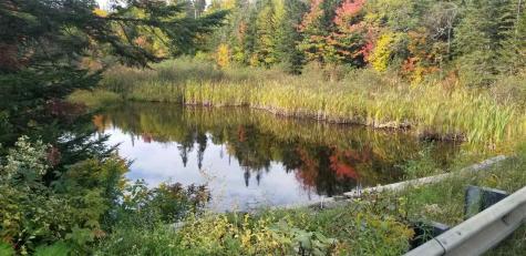 lot k Coles pond Walden VT 05873