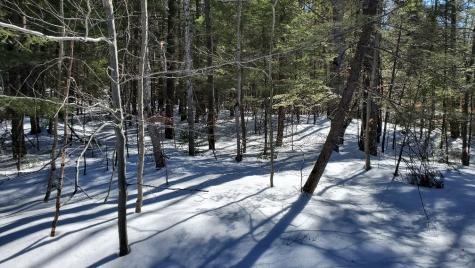 3 Acadia Way Conway NH 03818