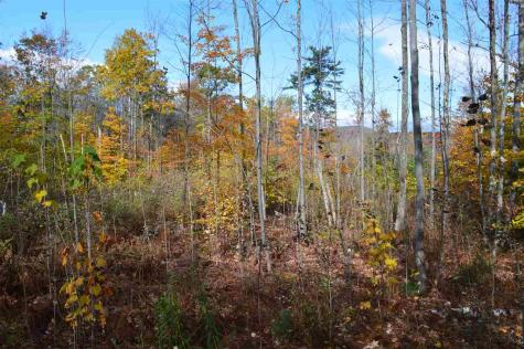 Lot 1 Durgin Tuftonboro NH 03816