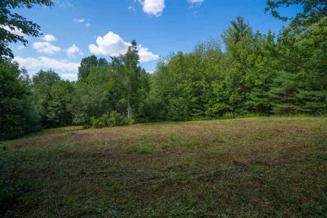 Lot 6 Wolf Den Road Hyde Park VT 05655