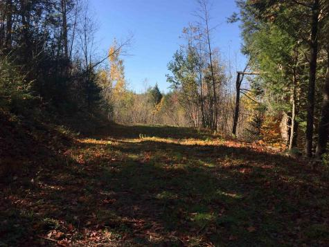 Lot #3 Cross Road Londonderry VT 05155