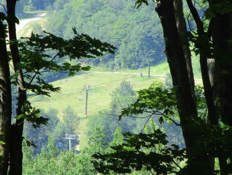 24 Lower Highlands Road Dover VT 05356