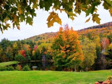 Richardson Trail Campton NH 03223