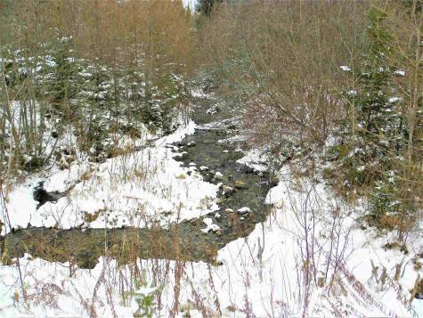 790 New Duck Pond Road Sheffield VT 05866