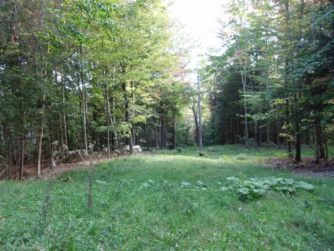 Foliage Lane Westmore VT 05822