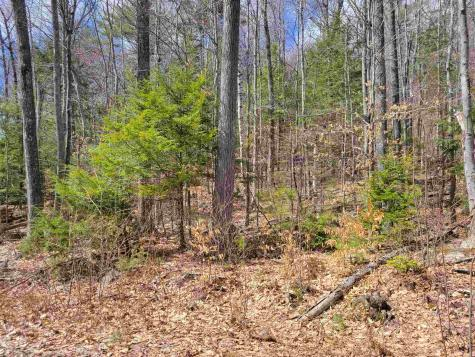 51 Hidden Valley Drive Tuftonboro NH 03816