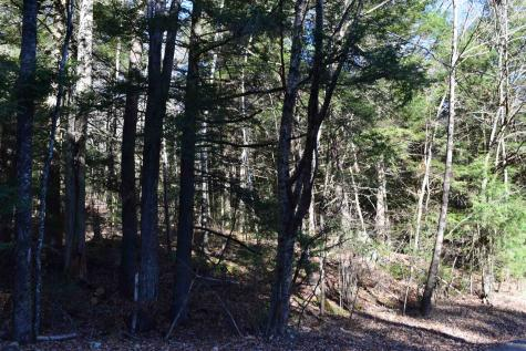Lot 155 Bear Road Haverhill NH 03765