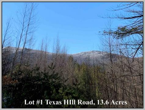 Lot #1 Texas Hill Road Plymouth NH 03264