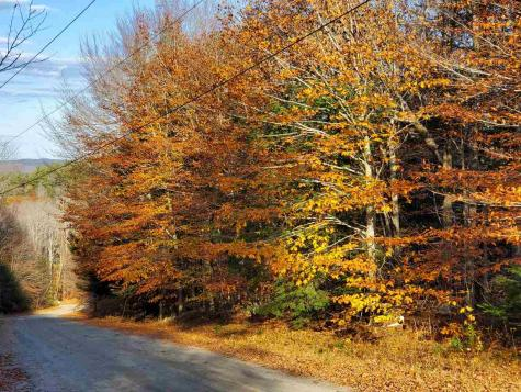 Danbury Woods Road Danbury NH 03230