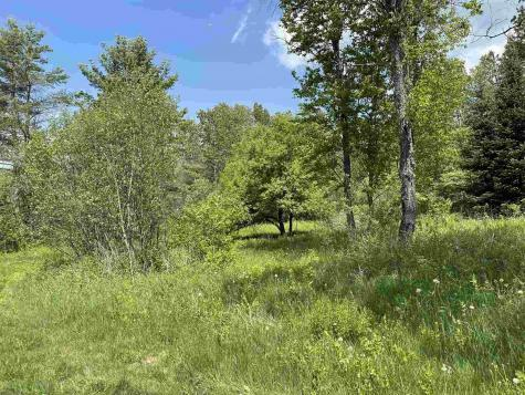 Lot #6 Waterford Hollow Lane Waterford VT 05819