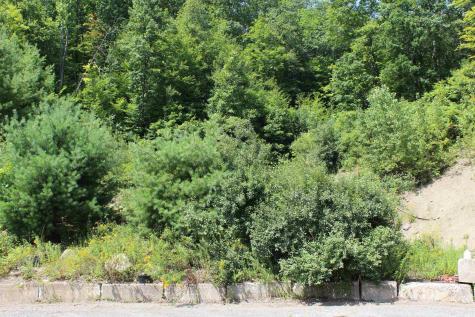 70 Broad Brook Road Vernon VT 05354