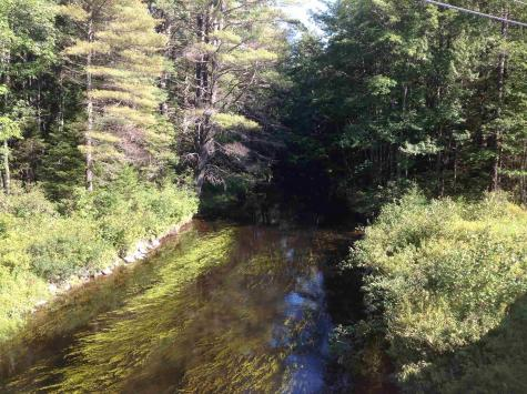 Pine River Road Effingham NH 03882