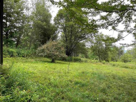 2319 Elmore Pond Road Wolcott VT 05680