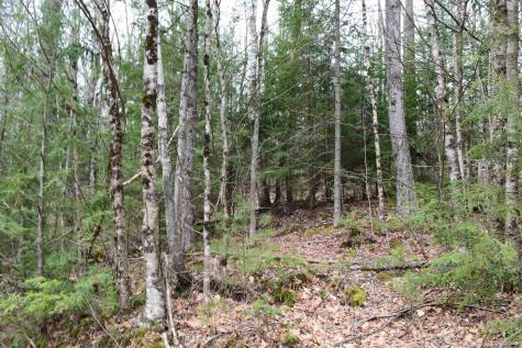 Lot 114 Bear Road Haverhill NH 03765