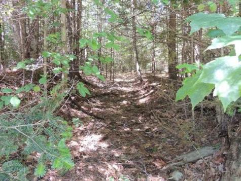 Lot #1 River Road Winhall VT 05340