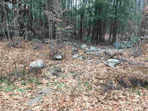 Lot 220 Sunrise Drive Middleton NH 03887