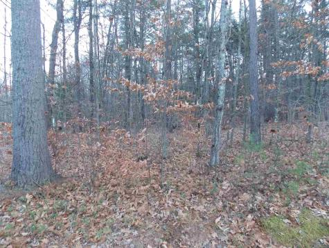 Pequawket Lot 114.2 Drive Conway NH 03818