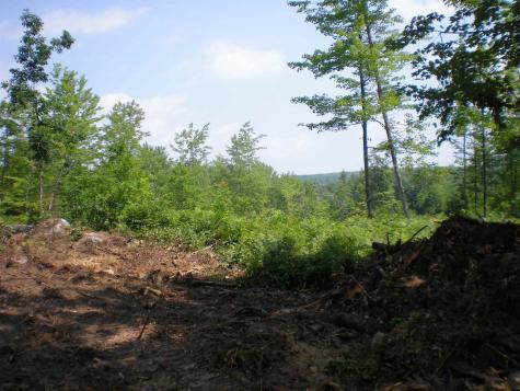 Lot 22 Deer Path Tuftonboro NH 03816
