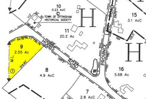 Hobbs Road Effingham NH 03882