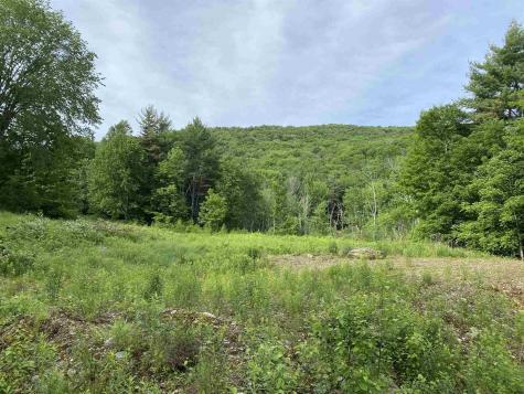 40 Mountain Road Middletown Springs VT 05757