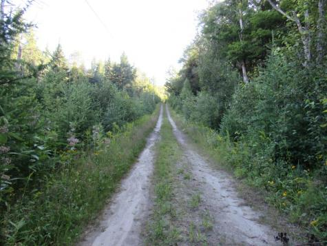 7200 Willoughby Ridge Westmore VT 05860