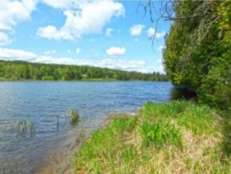 Lot 3B Coits Pond Cabot VT 05647