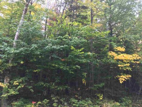 33 Sylvan Ridge Road Winhall VT 05340