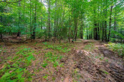 Hampshire Hill Road Worcester VT 05682