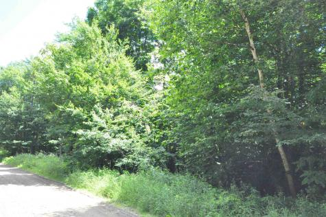 31 Woodsman Road Dover VT 05356