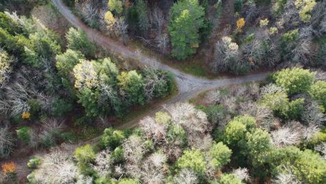 Turcott Road Wolcott VT 05680