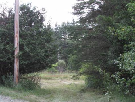 Bunker Hill Road Hardwick VT 05843