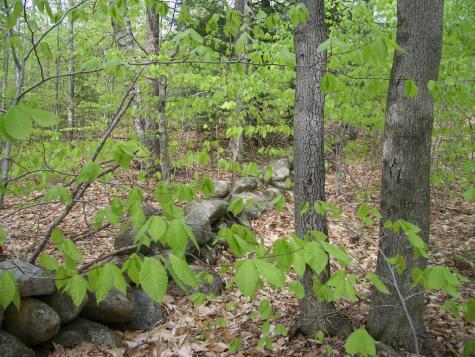 Lot 2-9 Mountain View Drive Bristol NH 03222