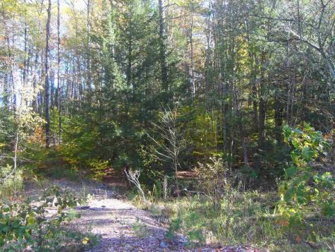 Lot 4 N Woodard Way Castleton VT 05735