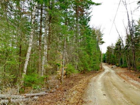 Wilderness Road Bethlehem NH 03574