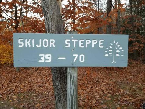 56 Skijor Steppe Sunapee NH 03782