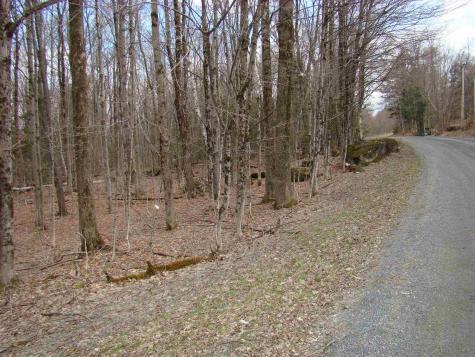 Shippee Road Readsboro VT 05350