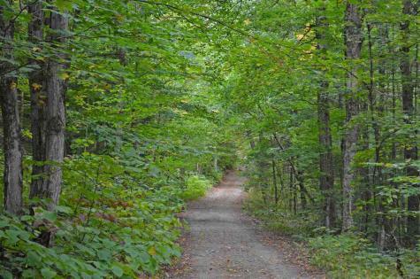 1625 Beaver Meadow Road Morristown VT 05661
