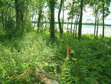 Lot # 9 Terrapin Lane Alburgh VT 05440