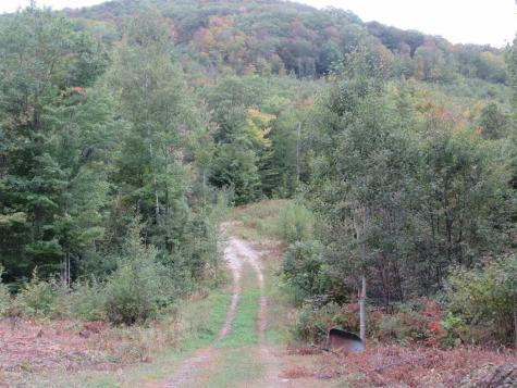Skinny Ridge Road Lyman NH 03585