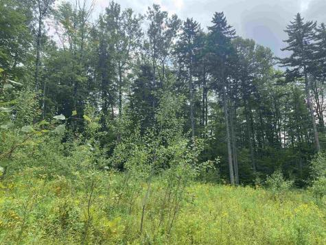 214 Valley View Road Dover VT 05356