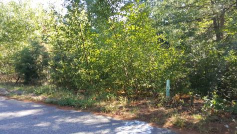 Lot 44 Maple Grove Lane Bristol NH 03222