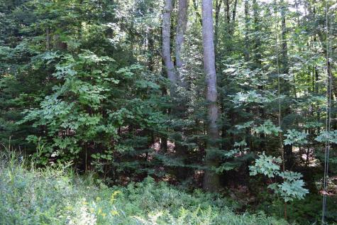 Lot 6 Ledgeway Littleton NH 03561