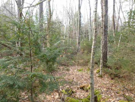 Map 37 Lot 385 Enfield Barnstead NH 03225