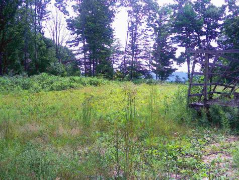 Lot 91 Perkins Road Gilmanton NH 03237